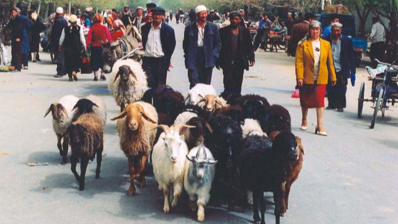 镇压穆斯林模式蔓延至新疆以外地区
