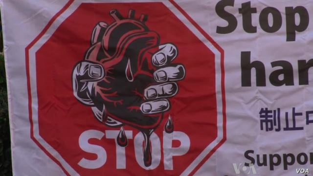 呼吁停止强摘器官暴行的条幅