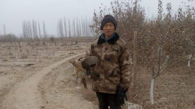 孔元峰在新疆阿克苏看守果园。